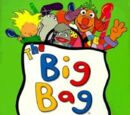 The Big Bag Big Book