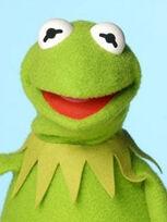 TF1-MuppetsTV-PhotoGallery-14-Kermit