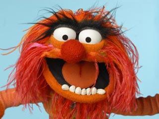 File:TF1-MuppetsTV-PhotoGallery-43-Animal.jpg