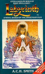 Book.labyrinth.Novel
