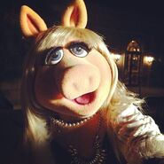Instagram piggy 8