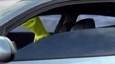 Kermit BMW France