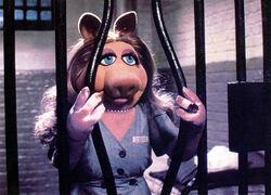 Piggyinprison