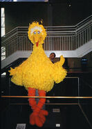 The-Art-of-the-Muppets-Exhibition-BigBird