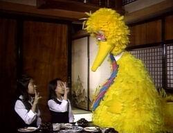 Bigbird-ichinisan