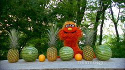 4516-Fruit