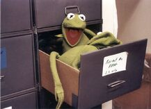 Kermit in drawer