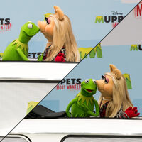 Kiss Kermit Piggy Muppets Most Wanted photo call in Berlin