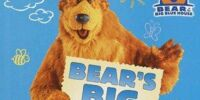 Bear in the Big Blue House coloring books