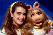Brooke Shields08