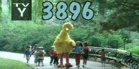 Episode 3896