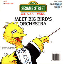 Meet Big Bird's Orchestra