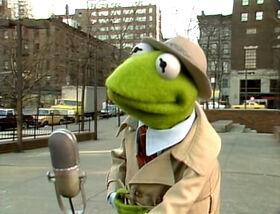 Kermit-SanJose