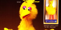 Talking Big Bird (CBS Toys)