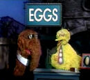 Television programming of Sesame Street