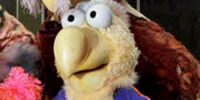 Donny Dodo