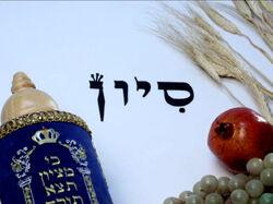 Shalom20d