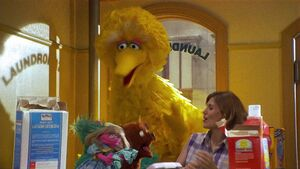 Sesame Street Laundromat Muppet Wiki Fandom Powered By