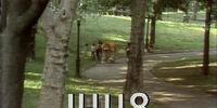 Episode 1448