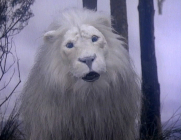 File:Whitelion.jpg