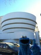 Cookie visits guggenheim feb 2015