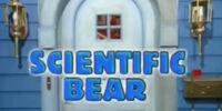 Episode 231: Scientific Bear
