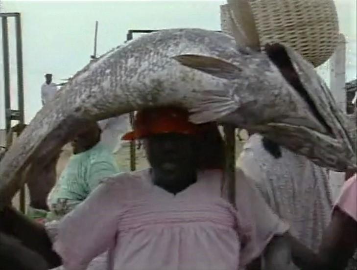 File:AfricanFish.jpg