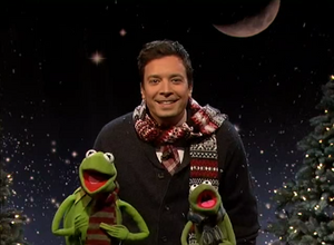 Fallon-Kermit-Robin