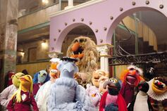 Muppetsclean