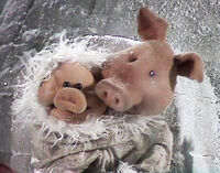 Pig Baby Lullaby of Broadway