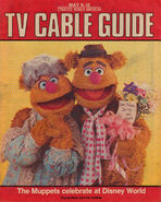 Syracuse Herald TV Guide May 6-12 1990