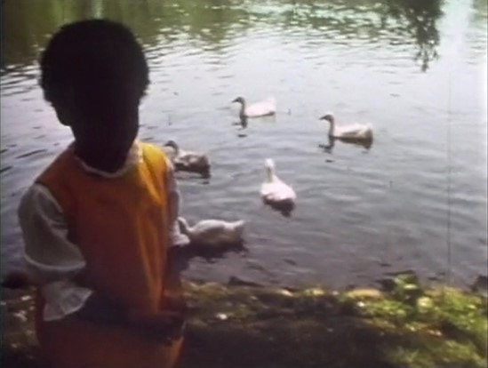 File:Song7-ducks.jpg