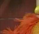Fictional species of Sesame Street