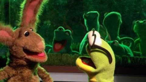 Kermit's Swamp Years - Life as a Pet (2002, Full-screen) (English Stereo, Audio Commentary)