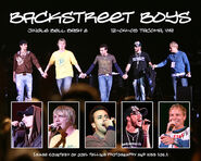 Backstreet Boys - JBB8 - 8x10