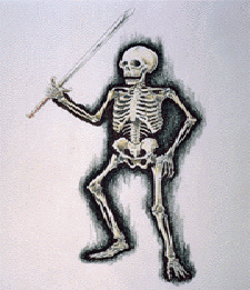 File:NM2DBSkeleton.png