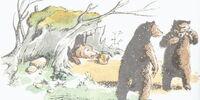 Bulgy Bears