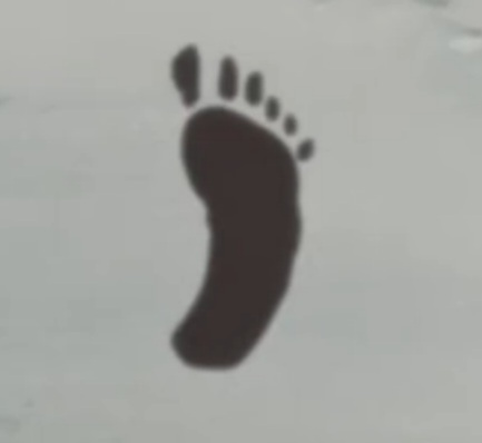 File:Footprint.jpg