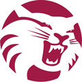 Chico State Wildcats.jpg