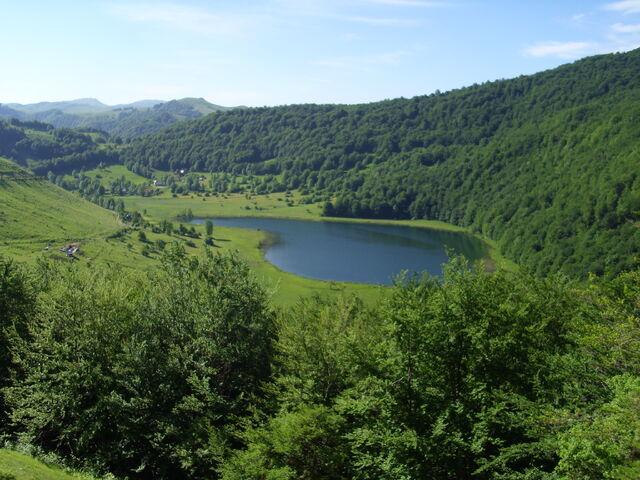 File:Crvanjsko in dense forest.jpg