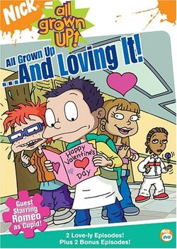 AllGrownUp ValentinesDay DVD