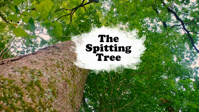 File:Spitting Tree title card.png