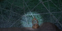 The Golden Cricket Cage of Khan