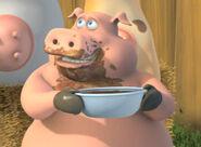 Pig-chili
