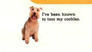 Zelda van gutters january february 1997 toss cookies