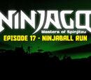 Ninjaball Run (Episode)