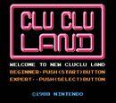 Clu Clu Land: Welcome to New Clu Clu Land