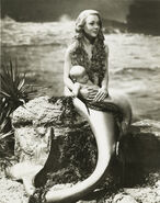 Mermaid-Miranda1948