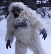 Snowbeast2011