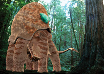Megasquid Non Alien Creatures Wiki Fandom Powered By Wikia